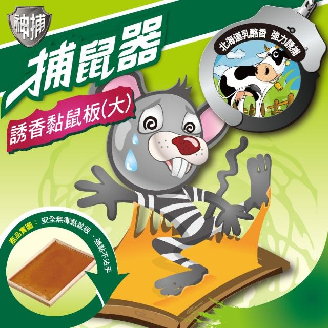 【神捕】超值6入誘香黏鼠板-大(乳酪香)
