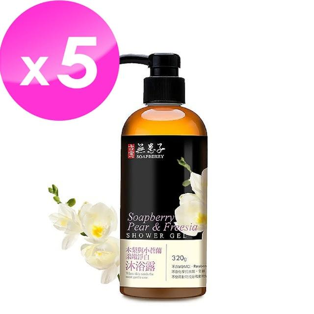【古寶無患子】寵愛優質沐浴超值組-限定香味 木梨與小蒼蘭(320gX5)