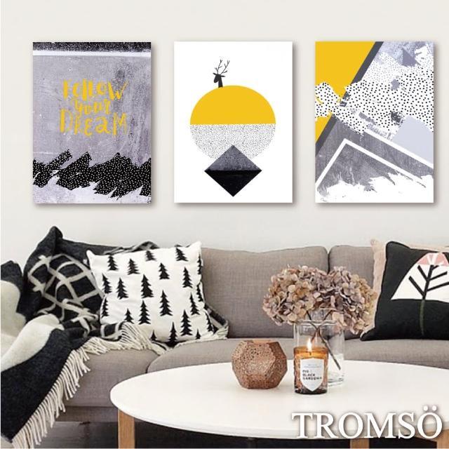 【TROMSO】時尚無框畫-潮流時代(三幅一組無框畫40X55CM)