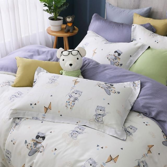 【HongYew 鴻宇】歐式壓框薄枕套2入 天絲300織 台灣製(比飛熊)