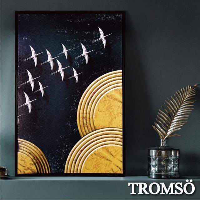 【TROMSO】北歐時代風尚有框畫-星辰繡鳥WA183(無框畫掛畫掛飾抽象畫)