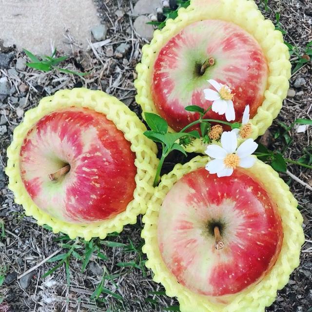 【水果達人】嚴選大顆 紐西蘭無臘蜜蘋果12顆* 2盒(蜜蘋果)