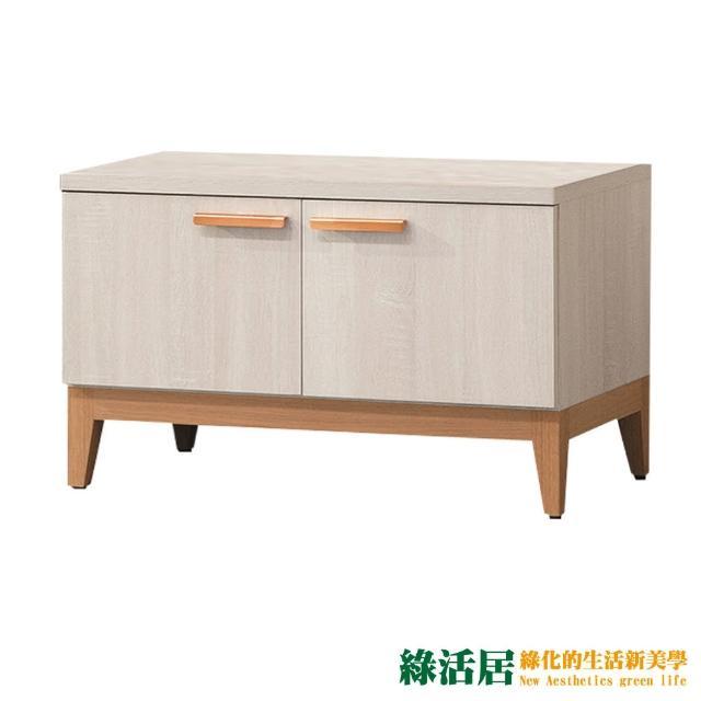 【綠活居】伊森瑪 雙色2.7尺二門座鞋櫃/收納櫃
