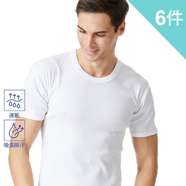 【BVD】吸汗速乾圓領短袖衫-6件組(透氣 吸濕 排汗)