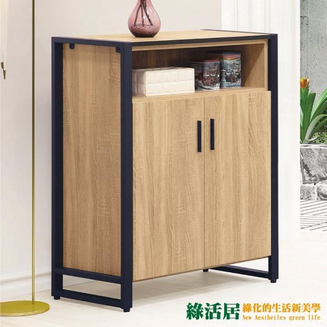 【綠活居】迪烏 現代2.7尺二門鞋櫃/收納櫃(二色可選)