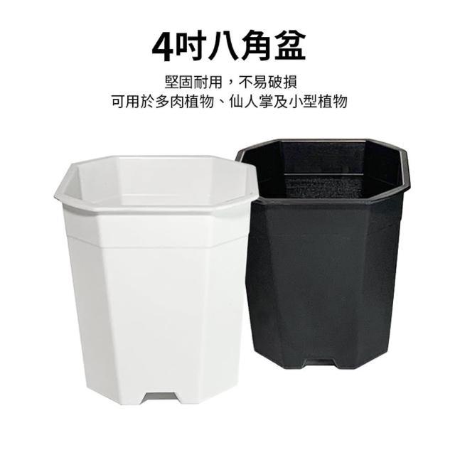 【生活King】4吋八角花盆(3入組)