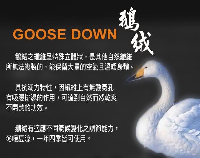 7-goose-down-650.jpg?t=1454392314838