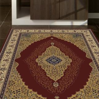 【范登伯格】薩比精緻雅典柔爽絲質感地毯-福滿藤(160x230cm)