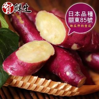 【賀鮮生】日本團購美食-紫皮奶香栗子地瓜8包(1kg/包)