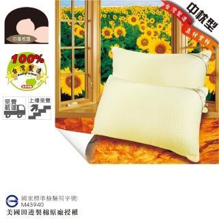 【優眠田邊】矽絨羽樂活纖棉枕2入(三層立體緹花親膚表布)