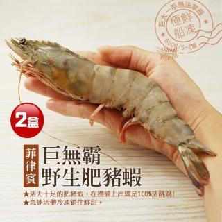 【優鮮配】特大肥滋滋野生肥豬蝦2盒(6-8隻/盒)