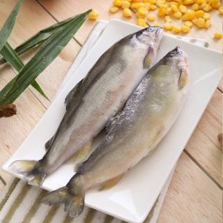 【華得水產】買1送1《共2盒》特選超爆卵母無毒香魚2(7-10尾/1kg/盒)