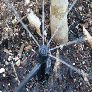 【灑水達人】澳洲Antelco五孔180度可調滴頭插針10個
