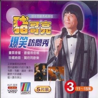 【正統豬哥亮訪問秀】豬哥亮爆笑訪問秀 3(5VCD)
