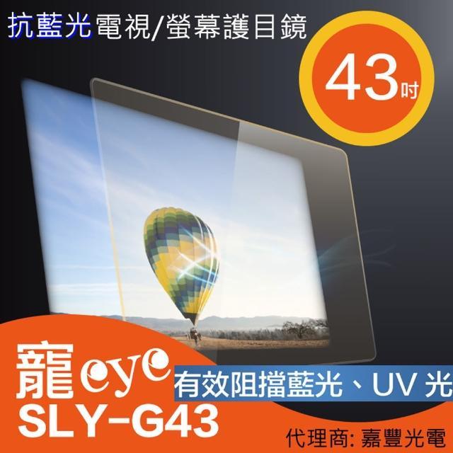 【寵eye】43吋 抗藍光螢幕護目鏡(SLY-G43)