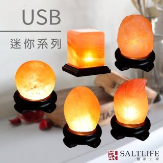 【鹽夢工場】USB系列|五款造型可選(創意造型鹽燈)
