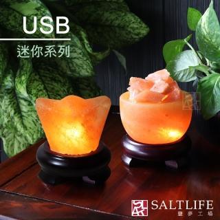 【鹽夢工場】創意造型鹽燈-USB系列(兩款皆為玫瑰鹽燈)