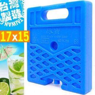 台灣製造 冰寶保冰磚-小(P062-755)