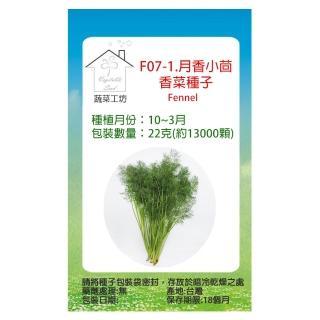 【蔬菜工坊】F07.茴香菜種子