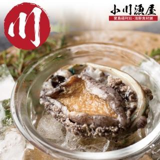 【小川漁屋】極品南非活凍帶殼鮑魚1包(500g+-10%/包/約6-8粒)