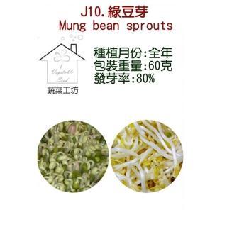 【蔬菜工坊】J10.綠豆種子(芽菜種子)