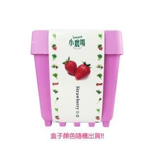 【蔬菜工坊】iPlant小農場系列-草莓
