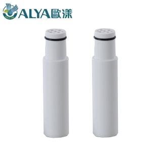 【ALYA歐漾】SPA精油除氯沐浴過濾器 HSF 126 專用濾芯 2入