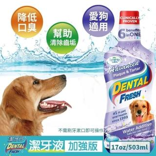 【美國潔牙白Dental Fresh】加強版潔牙液 503ml(2入組)