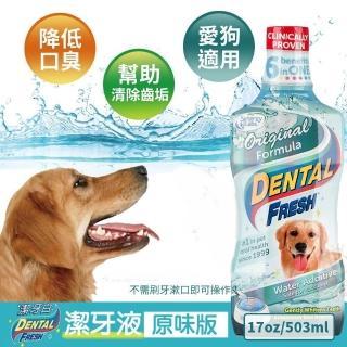 【美國潔牙白Dental Fresh】一般版潔牙液 503ml
