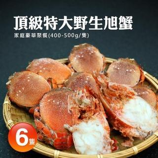 【築地一番鮮】嚴選野生特大母旭蟹6隻(400-500g/隻)