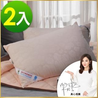 【卓瑩】遠紅外線枕頭(超值二入組)