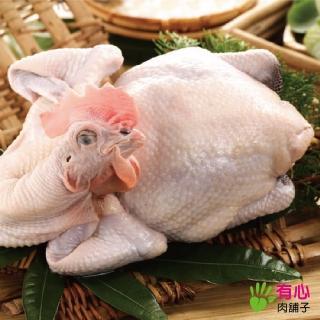 【有心肉舖子】黃金土雞(全雞)
