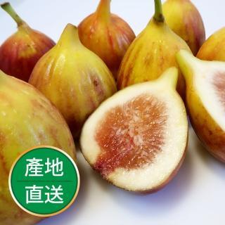 【果物配】新鮮無花果_盒裝1斤(有機轉型期)