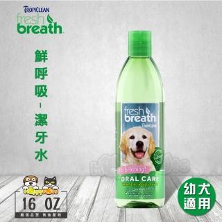 【Fresh breath 鮮呼吸】潔牙水-16oz/473ml(幼犬適用)