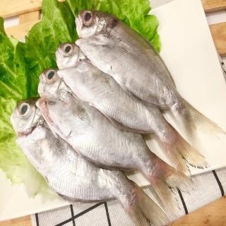 【老張鮮物】澎湖野生肉魚/肉鯽仔 5包組(300g±10%/包  約3-5隻)