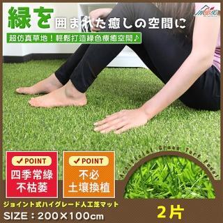 【Incare】超仿真環保拼接草皮地100*200(2入)