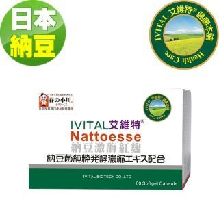 【IVITAL 艾維特】日本春之小川納豆紅麴軟膠囊60粒(隨貨送魚油1盒)