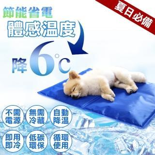 【夢工廠 冰墊M號40*30cm】寵物冰墊M號 貓狗冰墊 人寵可用(筆電散熱 涼墊 降溫 散熱 狗窩 貓床 椅墊 涼爽)