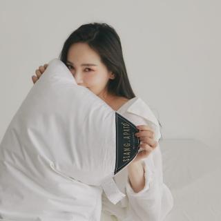 【翔仔居家】台灣製 30/70高品質飯店常態羽絨枕│適中款(2入組)