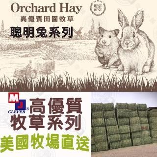 【MJ CLEVER DOG】聰明兔 高優質 牧草系列 提摩西草/甜燕麥草/苜蓿草/果園草(2.7磅/盒 兔子牧草 寵物牧草)