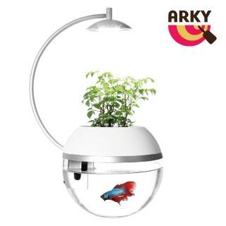 【ARKY】香草與魚Herb&Fish X