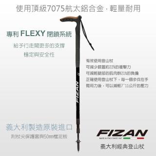 【FIZAN】頂級T字健行手杖 黑(FZS19.7504)