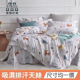 【這個好窩】台灣製 吸濕排汗天絲床包枕套組(單人/雙人/加大/特大)