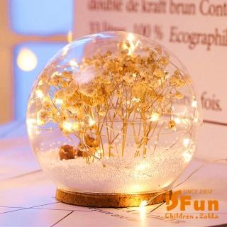 【iSFun】夢幻水晶球*USB聖誕雪花情境玻璃球燈/白乾燥花