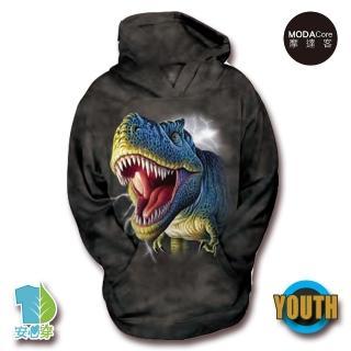 【摩達客】美國The Mountain 閃電雷克斯龍 少年兒童版 連帽T恤(預購)