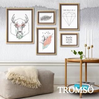 【TROMSO】風格北歐海報5框相框牆(相框裝飾相框牆)