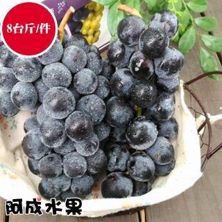 【阿成水果】苗栗卓蘭溫室巨峰葡萄(8台斤/件)