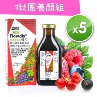 【歐洲屋】德國草本液-Floradix鐵元250ml(5瓶超值價)