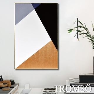 【TROMSO】北歐風尚板畫有框畫-北歐時尚幾何WA86(有框畫掛畫掛飾)