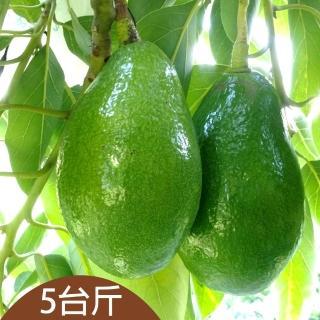 【台灣好農】楊家庄安心酪梨_5台斤(酪梨)